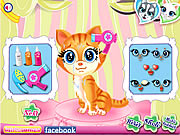 Игра Pets Beauty Salon
