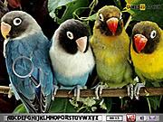 играть в игру Игра Найти предметы   Попугай