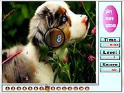 играть в игру Игра Животные   найти числа