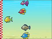 Игра Рыбьи гонки