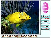 Игра Милые рыбки. Скрытые цифры